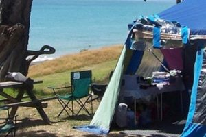 Lions purr in heartland Kiwi accommodation