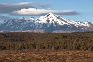 Ruapehu secures $8m to help with tourism loss