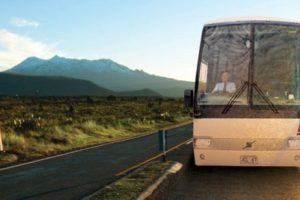 Go Bus to bolster luxury fleet to meet tourism demand