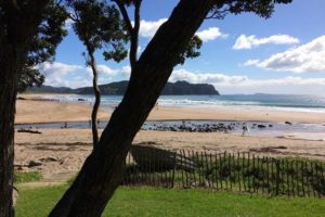 Infometrics: Coromandel economy strong but tourism could slow