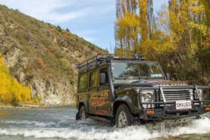 Not just for sale, Nomad Safaris open to investment