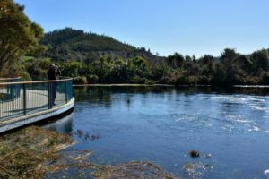 Submissions sought to protect renown springs