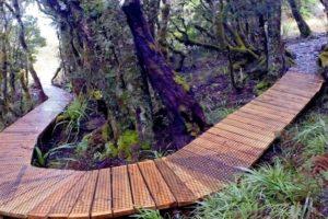 Labour: $1m funding for West Coast trails