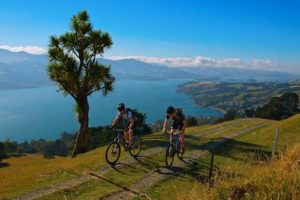 DOC to review new southern cycle trails