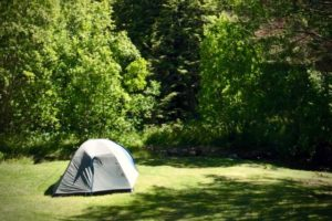 Dunedin commits $140k for freedom camping