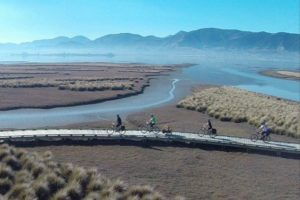 Aussies snap up iconic NZ cycle trails operator