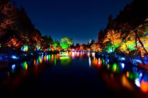 Festival of Lights injects $4.6m, attracts 8000 visitors