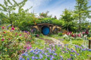 Watch: Hobbiton goes greener with new sustainability initiative