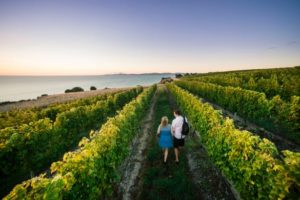 Destination Marlborough toasts LGNZ 2020 conference win