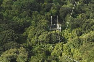 Proposed Wellington zipline flies past its first hurdle
