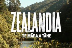 ZEALANDIA – Only a Beginning