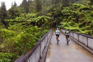 Operators asked to help with cycle trail survey