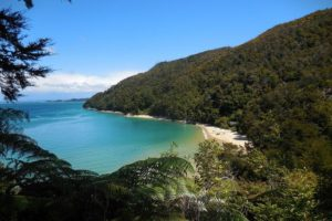 DOC launches 'poo in a loo' campaign at Abel Tasman