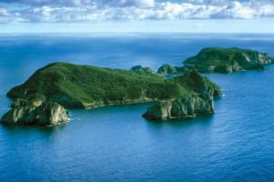 Maritime NZ helps protect Poor Knights marine reserve