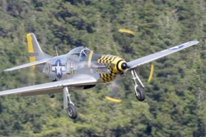 Warbirds over Wānaka secures international bookings