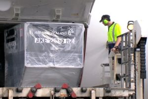 Air NZ international cargo flights increase