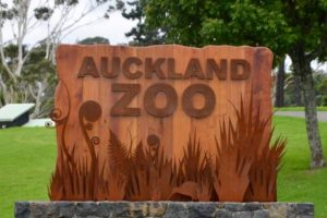 Auckland Zoo scores luxury cruise opportunity