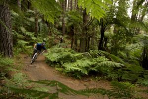 More gold in Rotorua's mountain biking