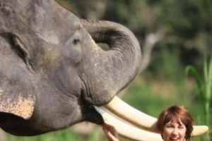 WREDA rejig promotes Heaton to new tourism lead role