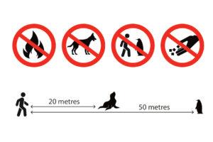 Dunedin launches Wildlife Care Code for visitors