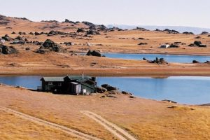Disney contributes to big 48% jump in Central Otago guest nights