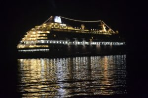 Bright lights, bird strike: Cruise moves to reduce ship lighting