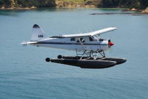 Auckland Seaplanes back in the sky