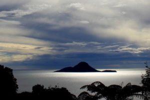 Tourist who died after fall on Moutohorā (Whale Island) named