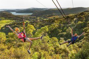EcoZip Adventures reopens Waiheke ziplines