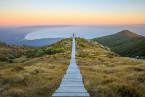 Hump Ridge Track to become Great Walk