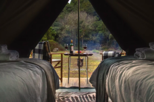 New luxury campsite launches on Timber Trail