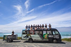 Stray NZ, Haka Tours and Go Orange shine in adventure tourism awards