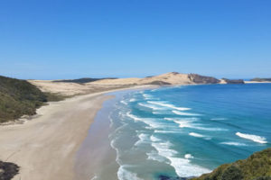Future of Te Oneroa-a-Tōhē/Ninety Mile Beach under review