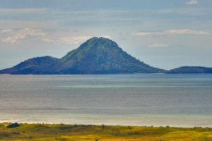 White Island Tours restarts Moutohorā/Whale Island trips