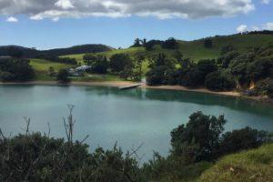 Julian Robertson's plans for new 'super luxury' Waiheke lodge