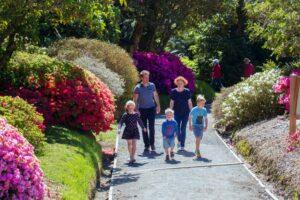 Taranaki Council resumes Pukeiti Gardens upgrade