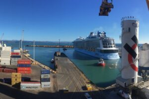Cruise ship revenue lifts Napier Port interim profit