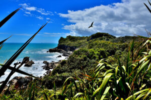 Work to begin on Kawatiri Coastal Trail