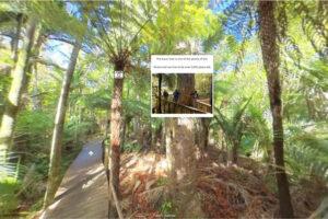 Bush and Beach launches virtual tours