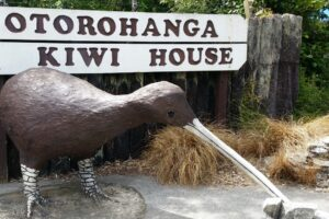 TLC, Waitomo operators band together to boost business