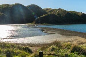 Greater Wellington seeks feedback on regional parks