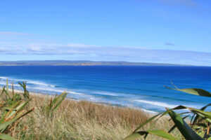 Tourism opportunity awaits on Chatham Islands – TNZ