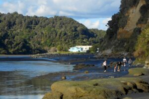 Freedom camping banned at Taranaki sites