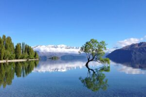 Lake Wānaka Tourism kicks off 'Local's Choice 'competition
