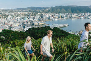 2020 Year in Review: WellingtonNZ