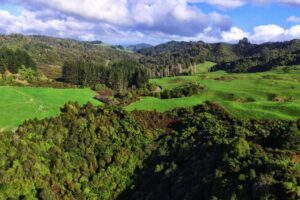 Discover Waitomo workers redeployed to $500k project