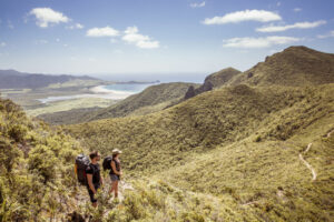 Great Barrier Island to start visitor levy consultation