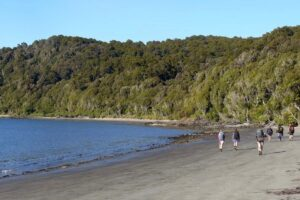 New Jobs for Nature projects to create Southland roles