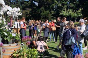 Festival fails to raise funds, postpones to 2023
