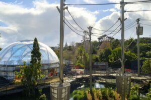 Roof goes on Auckland Zoo's Indonesian habitat